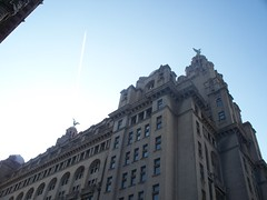 Royal Liver Building Liverpool - Liver Birds (ramseyp) Tags: architecture liverpool liverbirds royalliverbuilding castlestreet liverpoolcapitalofculture2008