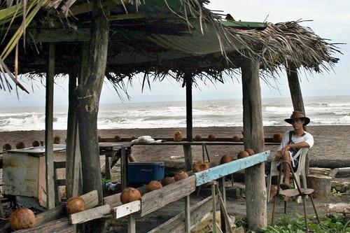 Vendedor de cocos, en Tortuguero