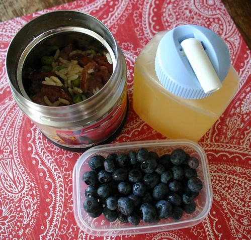 Preschooler Lunch #52: July 30, 2008