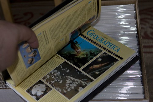 National Geographic Homemade Geographica Book