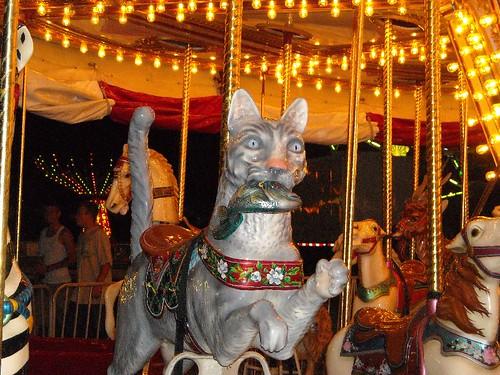 Carousel 6