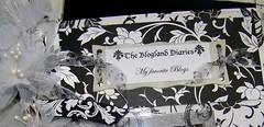 The Blogland Diaries