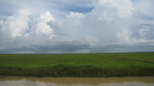 Beautiful rice paddies and a storm in the distance