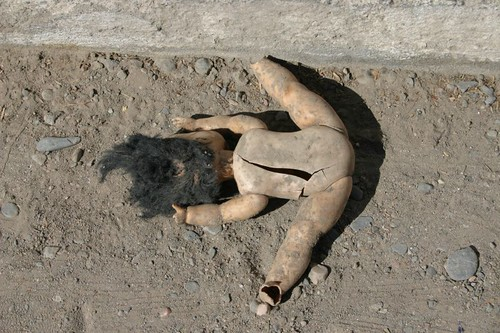 Roadkill of the day...Amaichá del Valle, Argentina.