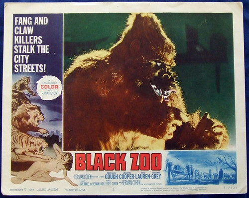black-Zoo2