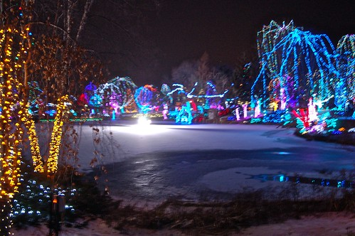 Zoo light show