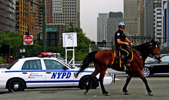 NYPD rider (bNat!) Tags: nyc horse usa ny newyork car caballo us unitedstates police nypd eua cop ustrip rider cpr policia coast2coast policeman cavall estadosunidos nuevayork eeuu novayork newyorkpolicedepartment 1ststop courtesyprofessionalismrespect pachuloyo estatsunits ouyeah policiadenovayork