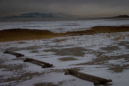 Shore of the Great Salt Lake