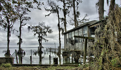 camp on Lake Verret (peter.clark) Tags: trees camp louisiana cypress lakeverret