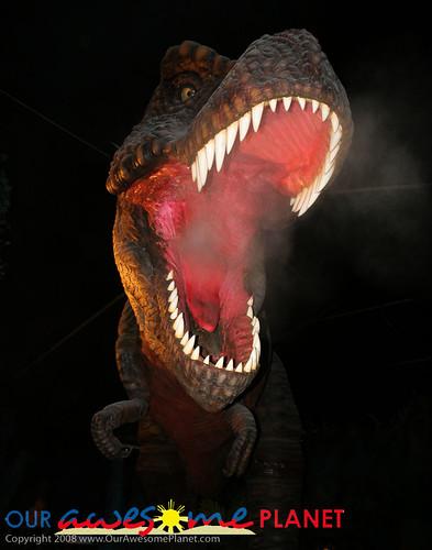 Dino's Alive-30