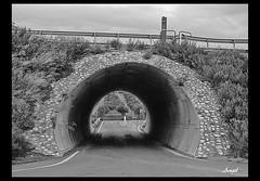 Tunel (Angel1940) Tags: espaa blancoynegro canon andaluca autopista granada tunel