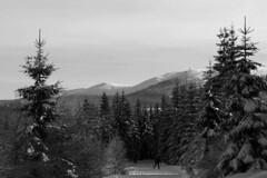 IMG_4350czb (majena) Tags: winter snow mountains czechy