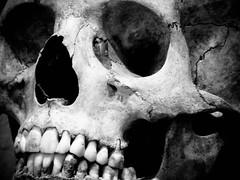 ti somiglia? (pino piedimonte) Tags: skull explore autoritratto soe teschio testa blueribbonwinner otw bej abigfave flickraward theunforgettablepictures newacademy goldstaraward rubyphotographer 100commentgroup neroametà licwip capemort