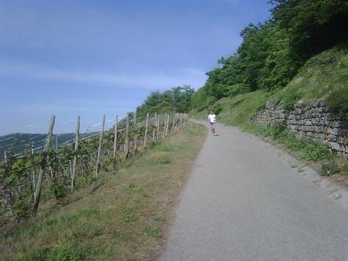 Stromberg Extrem 03