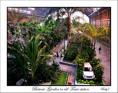 Botanic Garden in old train station (baby7) Tags: green searchthebest mywinners abigfave anawesomeshot diamondclassphotographer proudlychopped