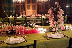 pink-green-centerpieces-wedding-reception (tibimages) Tags: pink green tablesetting weddingreception centerpieces