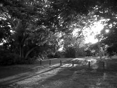 Nice light ([ Kane ]) Tags: light shadow blackandwhite sun art lines dark australia qld kane gledhill myaustralia kanegledhill humanhabits wwwhumanhabitscomau kanegledhillphotography