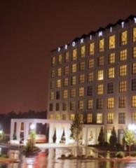 """Фото 1 - """"Зеленый"""" отель Proximity"""