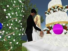 wedding cakes bay area