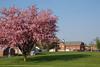 Spring in Wayne County, IN