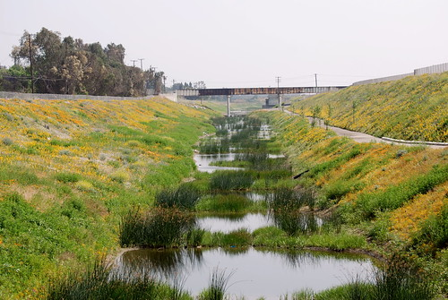 wetland treatment Wetland treatment is a long-term technology intended to operate continously for years synonyms: na applicability: constructed wetlands have most commonly been used.
