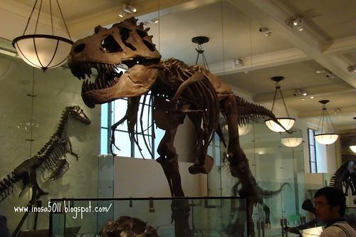 自然歷史博物館-恐龍館