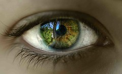 La ventana del alma (Fernando Rey) Tags: verde green eye window ventana ojo mirror alma soul espejo