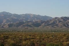 IMG_0974-fixed (quinn.anya) Tags: arizona saguaronationalpark