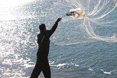 Net Fishing for Tainhas in Laguna, SC, Brasil 7 (Ricardo Carreon) Tags: red brazil man net sc silhouette brasil fishing fisherman topv222 feed silueta santacatarina homem tainha rede hombre pescador fishingnet pescar pescando challengeyouwinner theunforgettablepictures