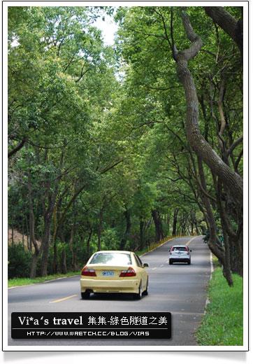 【集集綠色隧道】中部景點一日遊~集集綠色隧道