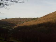 cwn carn village (dandavie) Tags: wales forest town village view cloudy hills dull cwn carn