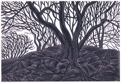 Entwined (wingedlion) Tags: art print engraving printmaking linocut blockprint grabado wingedlion gravure nataliamoroz