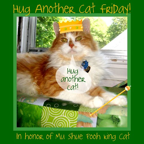 Hug another Cat Friday