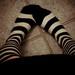Prisonner socks