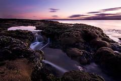 Honeycomb Rocks (BarneyF) Tags: sunset reflection water rock wirral westkirby rockpool hilbreisland deeestuary