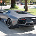 the reventon in wild