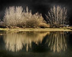 Espejo // Mirror (Todo-Juanjo) Tags: naturaleza lake color reflection tree nature lago flickr arboles asturias reflejos seleccion asturies potofgold todojuanjo