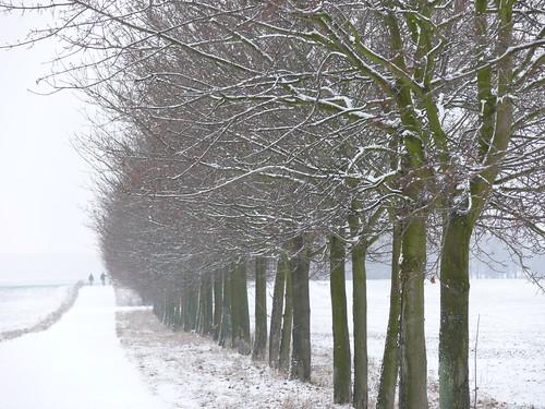 Wandersleute im Schnee