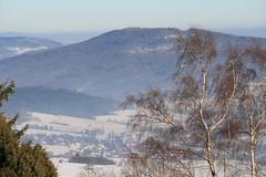 Hochrhn (ivlys) Tags: trees winter snow mountains castle landschaft rhn otw milseburg mywinners bieberstein ivlys