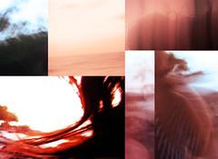collage de errores (AnglicayPunto) Tags: islafuerte