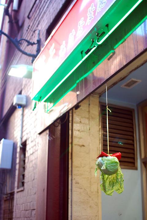 A hanging lettuce