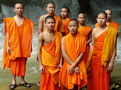 Young serious Buddhist monks (Bn) Tags: temple topf50 buddha religion buddhism monks laos enlightenment topf100 oranje laungprabang 100faves 50faves youngmonks lifeissuffering tadsaewaterfall theravadaschool spiritualtraining searchingenlightenment serveasofficiantsmonksinorange 8monks dutchmonks
