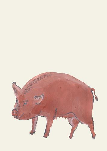 pig, meaty