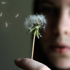 (Lou Bert) Tags: portrait self blow dandelion explore 365 frontpage