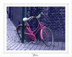 Breda Flickr meetup: artistic bike artistic exposed (juvani photo   digital art) Tags: pink bike lumix meetup panasonic breda fiets roze selectivecolor fz50 twitter flickrchallengewinner challengefactorywinner thechallengefactory juvani bredameetup20100425 juvaniphoto juvaniphotoontwitter wwwjuvaniphotonl 500pxcomjuvani