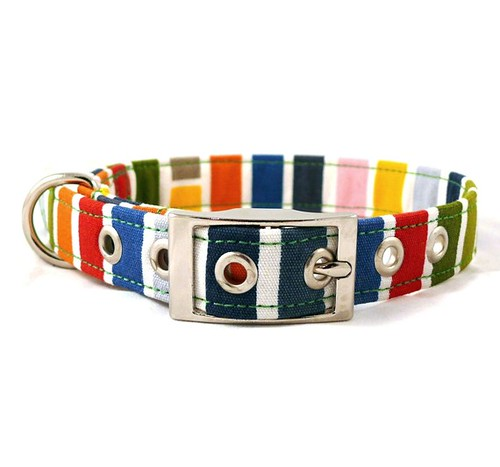 striped dog collar etsy
