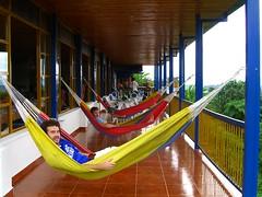 Boys chilling in  hammocks, Finca los Grisoles