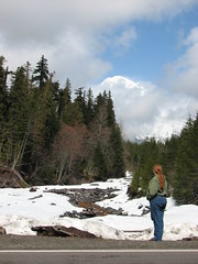 Theresa in the Valley (Great Beyond) Tags: road park county trip trees snow cold forest canon geotagged outdoors is washington nationalpark spring highway paradise power shot pacific northwest nps 7 roadtrip powershot mount theresa national mountrainier rainier mountrainiernationalpark pacificnorthwest wa pierce wilderness washingtonstate nationalparks s3 range cascade geotag backwoods tahoma cascaderange wilds highway7 longmire rainiernationalpark piercecounty canons3is powershots3 roughcountry paradisewashington