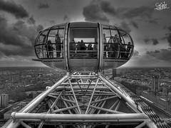 London Series. London Eye