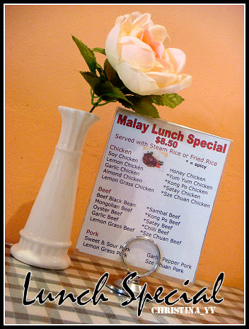 Malay Lunch Special